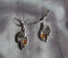 Amber Earrings ER1057